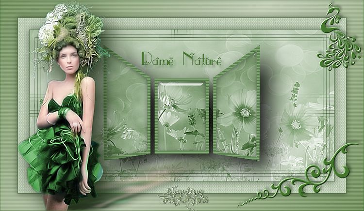 Dame Nature (PSP) 190118025849535751