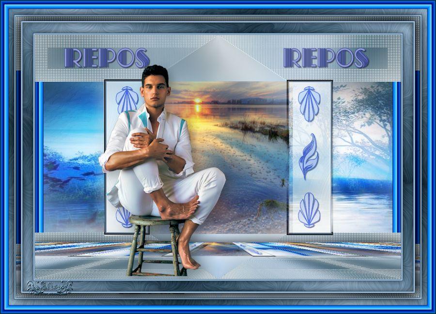 Repos (Psp) 190118060934501711