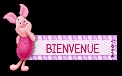 LE REGLEMENT DU FORUM - Avenant n°1 - Page 31 190128064546294253