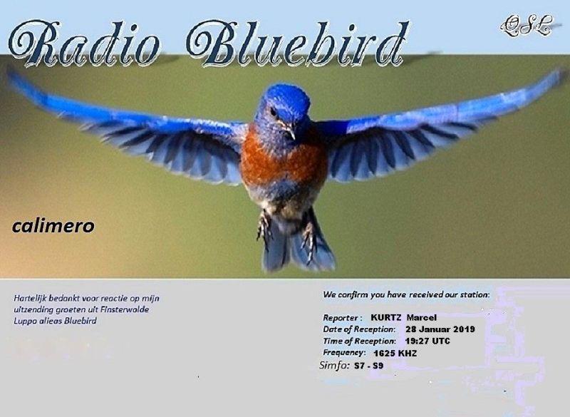 eQSL de R.BLUEBIRD 190130103450575293