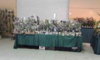 exposition vergeze  Mini_190202044754407093