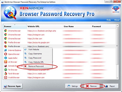 Browser Password Recovery Pro Enterprise Edition v3 5 0 1-P2P