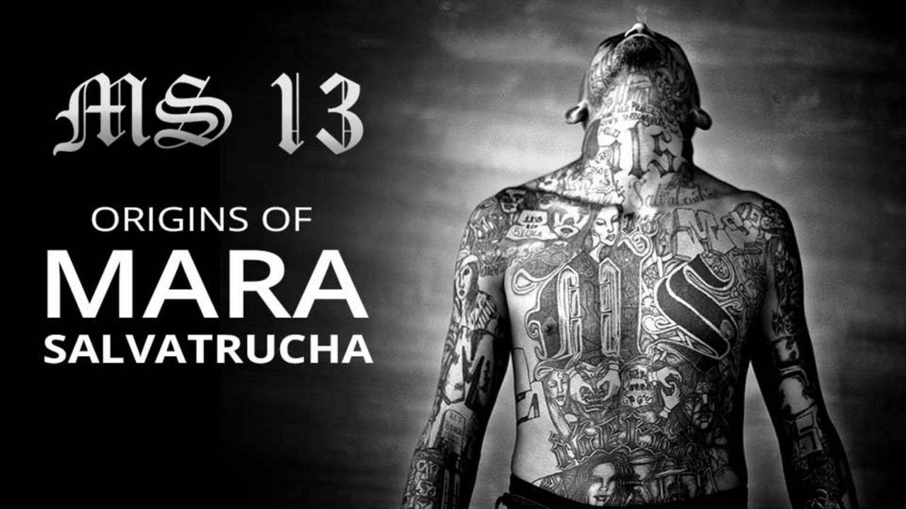Mara Salvatrucha 13 (MS-13) Partie-I 190216045817409248