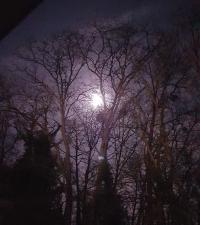 C' est la super lune ce soir Mini_190219095637506406
