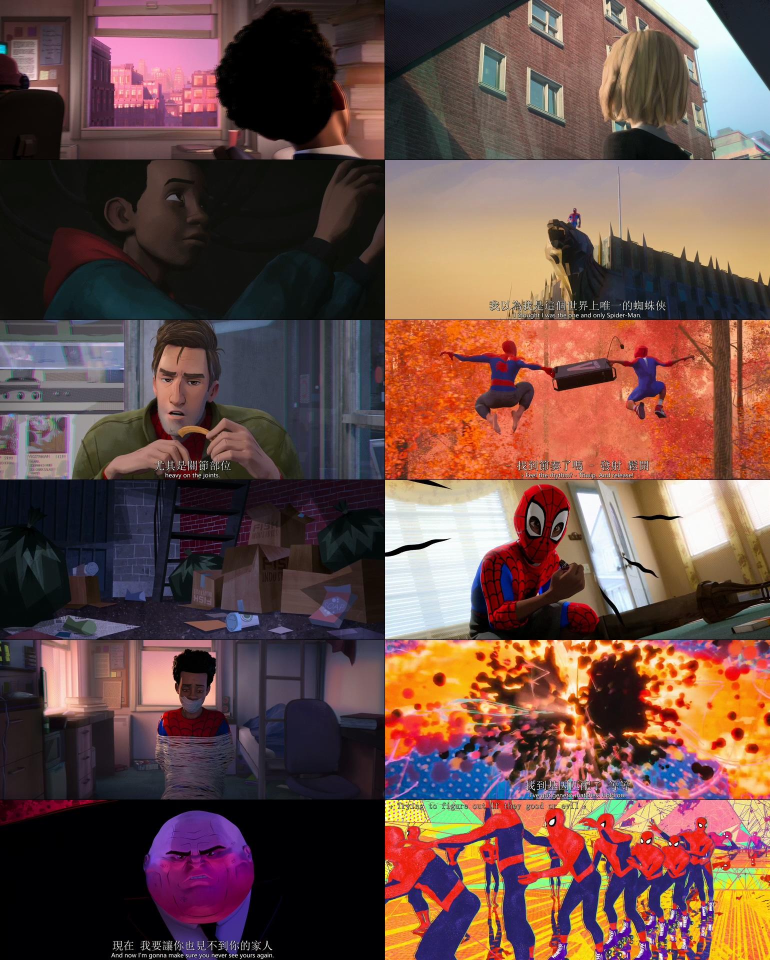 這邊是[美] 蜘蛛俠:平行宇宙/蜘蛛人:新宇宙.2018.HD-720p/1080p[MKV@3.5G@繁簡英]圖片的自定義alt信息;546790,727711,haokuku,36