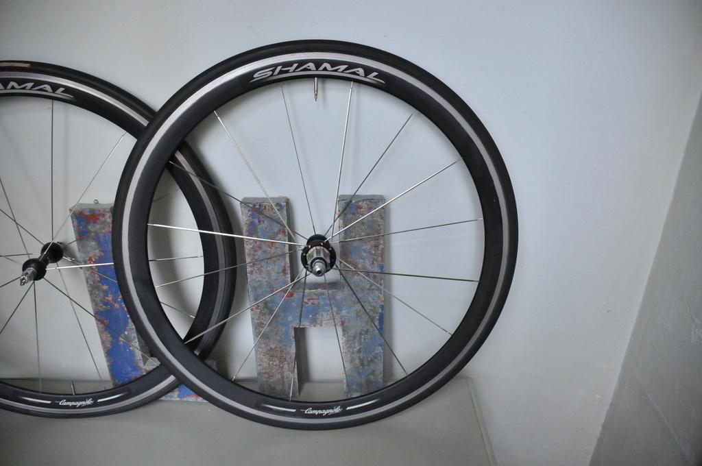 Bianchi pro XL Titanium 190224014218203027