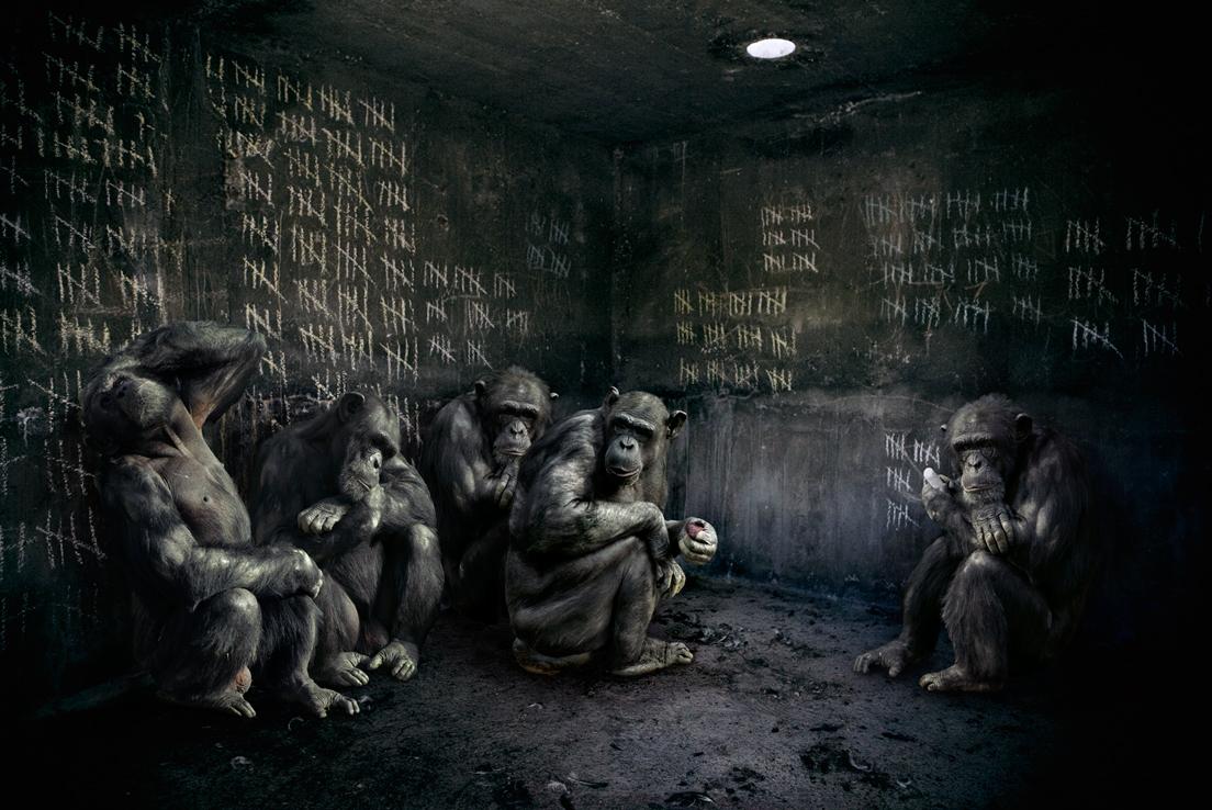 Singe prison