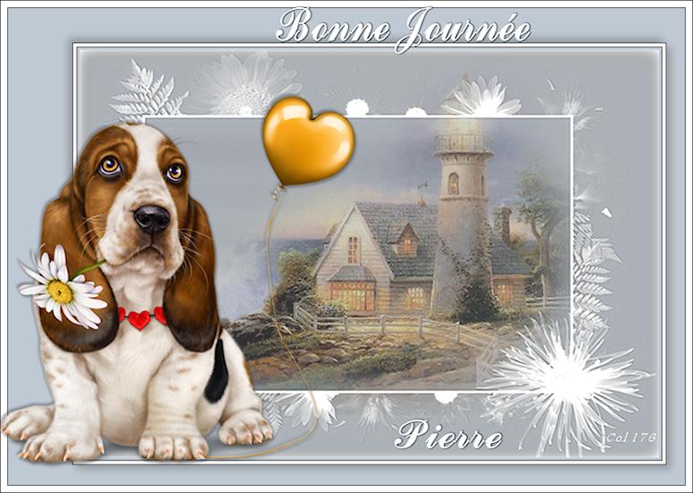 Bonjours/Bonsoirs - MARS 2019 190301090505210053