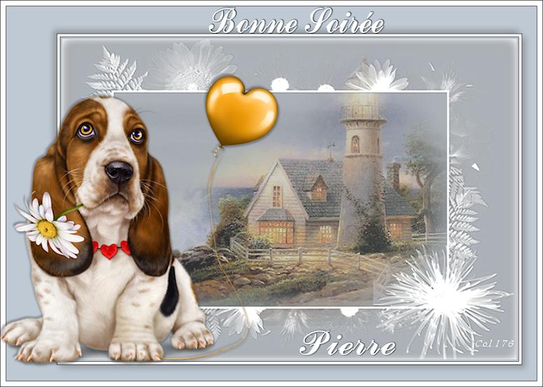 Bonjours/Bonsoirs - MARS 2019 190301090626599081