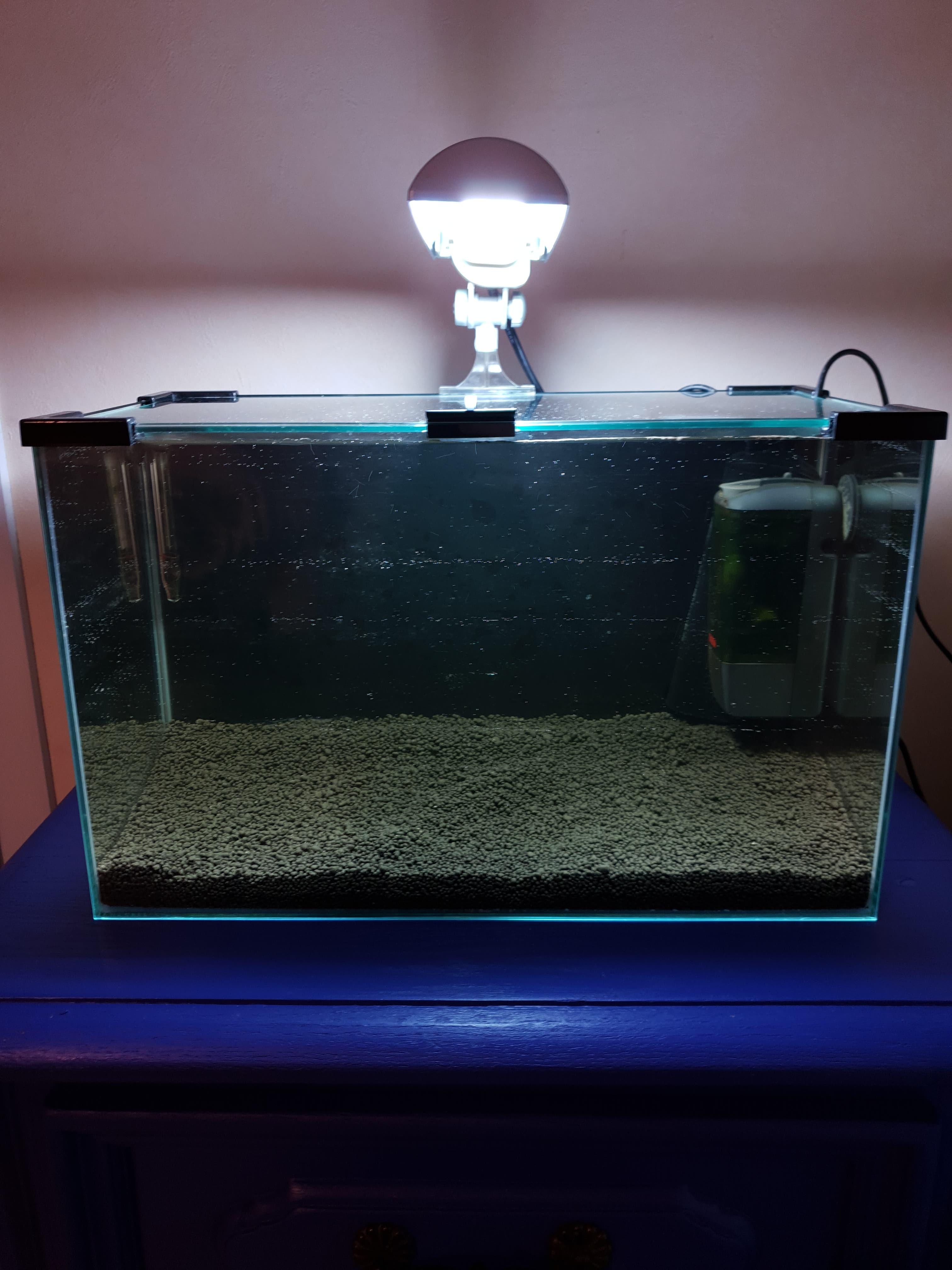 20 litres - Simple, basique 190305082141801664