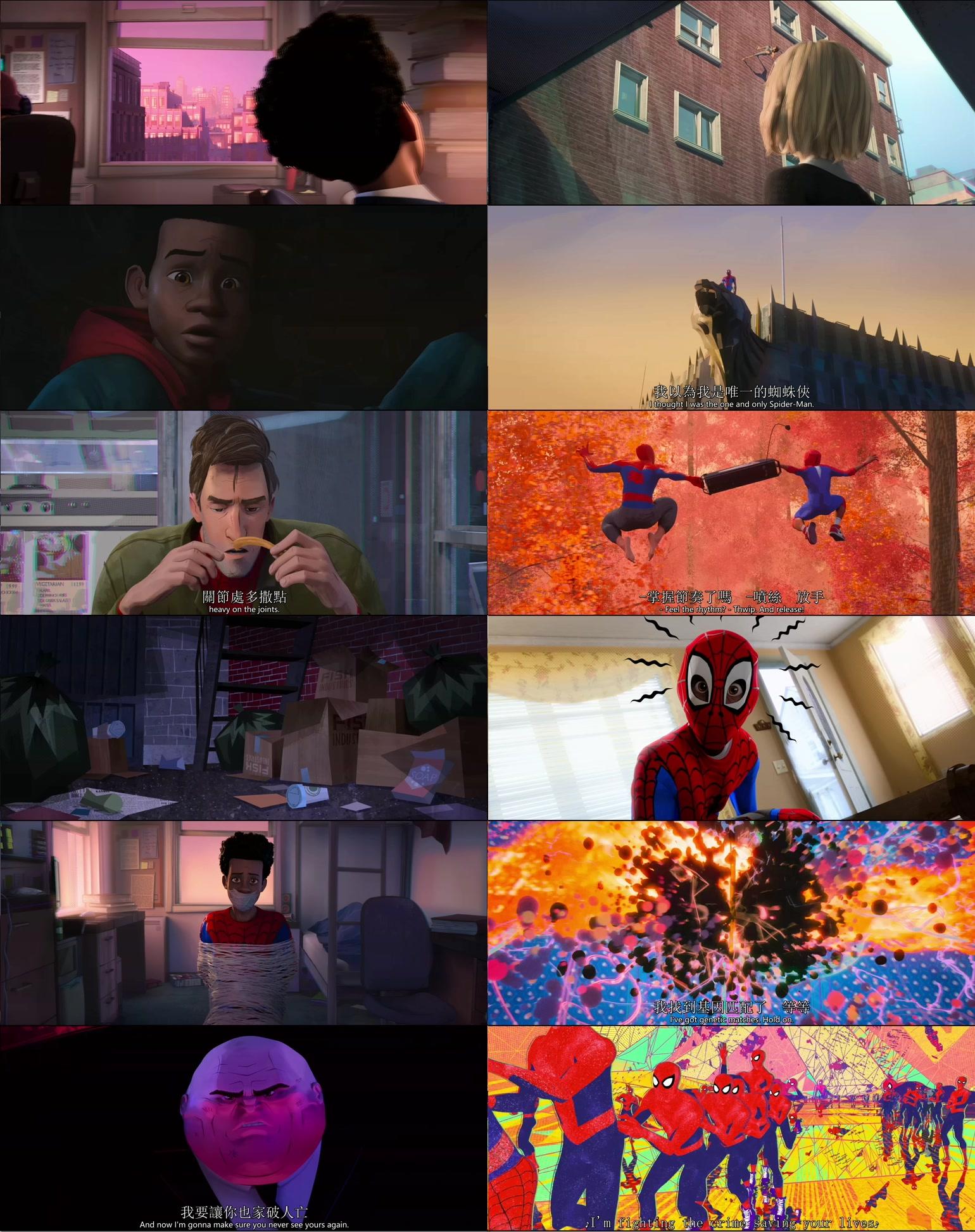 這邊是[美] 蜘蛛俠:平行宇宙/蜘蛛人:新宇宙.2018.BD-720p/1080p[MKV@2.2G@繁簡英]圖片的自定義alt信息;547051,728283,haokuku,54