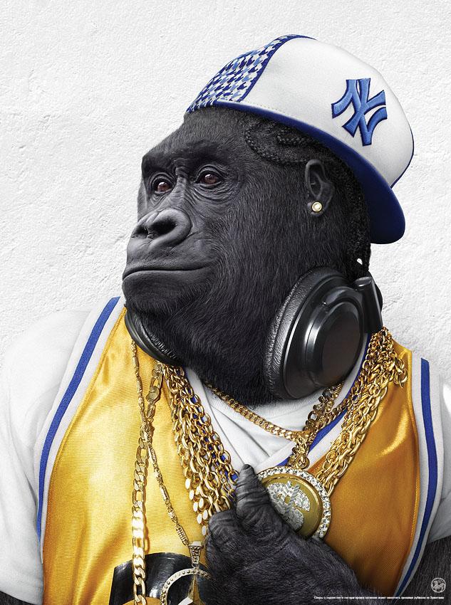 Singe Rapper