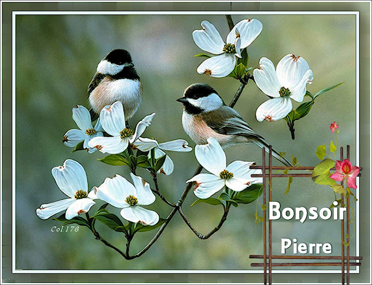 Bonjours/Bonsoirs - MARS 2019 190325064917975191