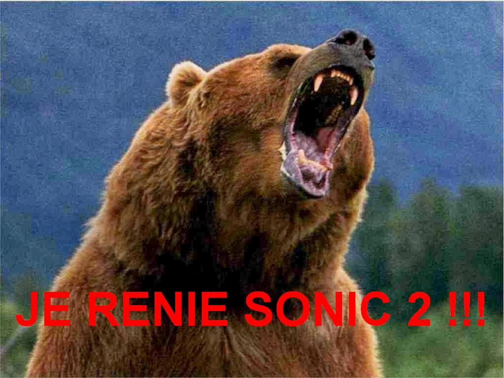 le gros ours renie sonic 2