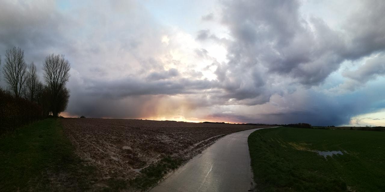 Photo 2019-03-17 - Brabant Wallon (Mathieu L?v?que)
