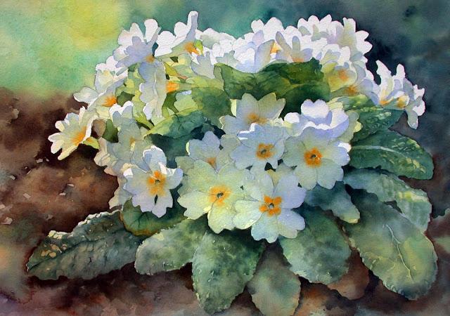 Fleurs printanières  19040512472149015