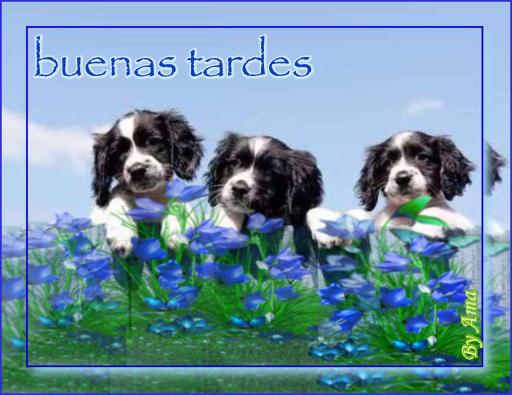 Tres Hermanos Olfateando 19040612325017247