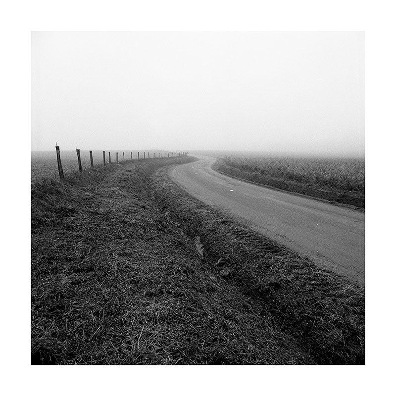 scan Route brouillard virage