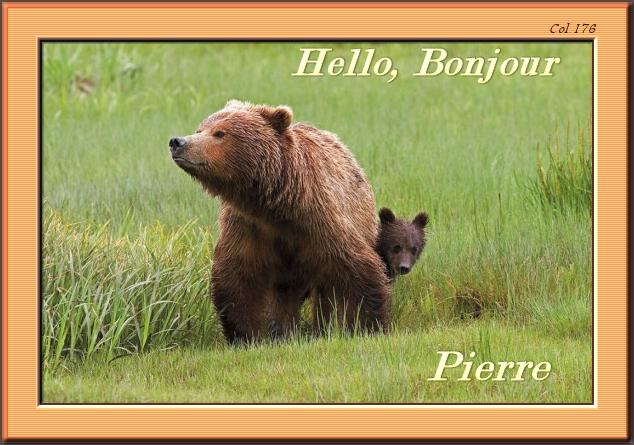 Bonjours/bonsoirs d'AVRIL 190408044928976275