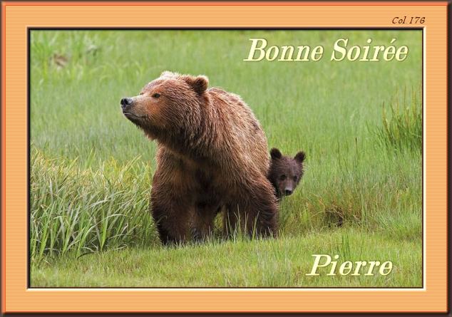 Bonjours/bonsoirs d'AVRIL 190408044959532367