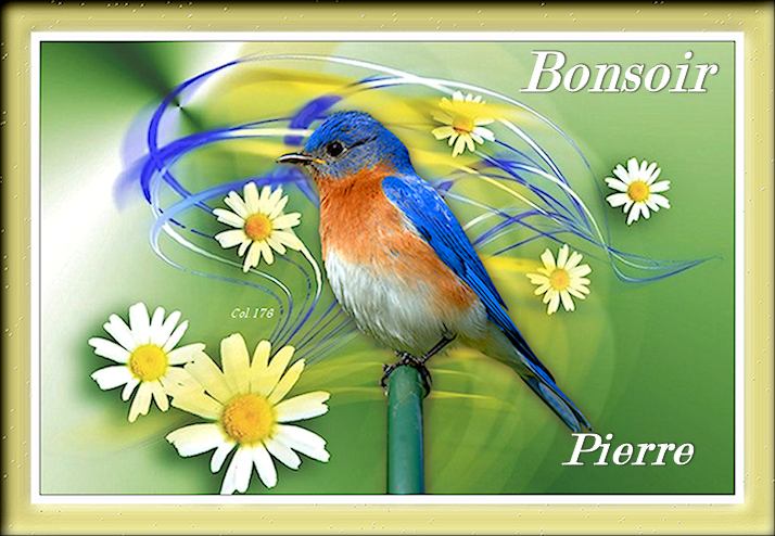Bonjours/bonsoirs d'AVRIL 19040804510683178