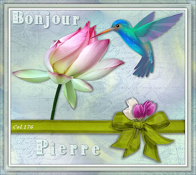 Bonjours/bonsoirs d'AVRIL 19040804522850162