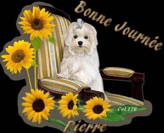 Bonjours/bonsoirs d'AVRIL 190408045419758931