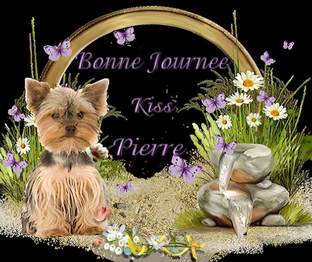Bonjours/bonsoirs d'AVRIL 190408050230156147