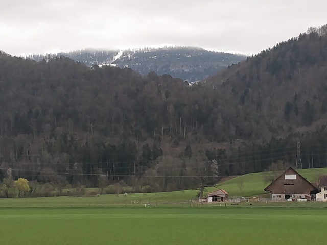 Mondiale en Suisse à Delémont - - du 27.7 au 01.8.2021 190408083618412628