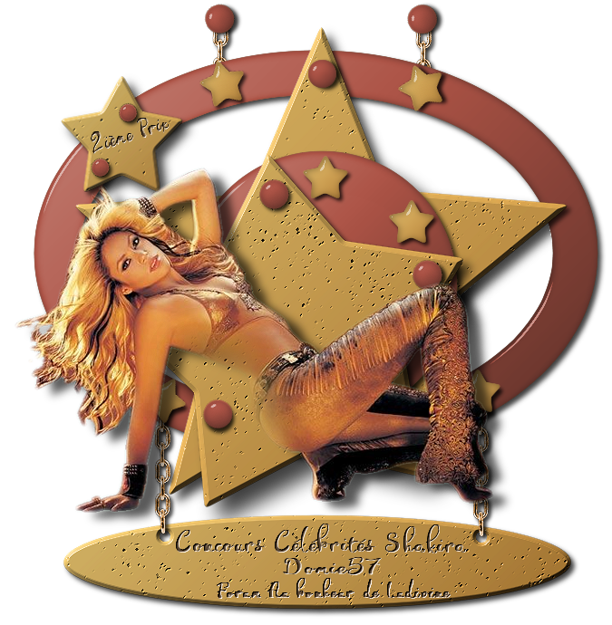 """Gagnants et prix du concours célébrités """"Shakira"""" 190411041152744495"""