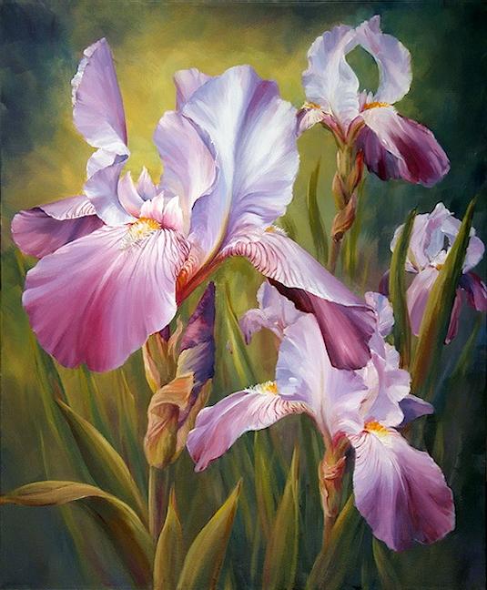 Fleurs printanières  19041211503179961