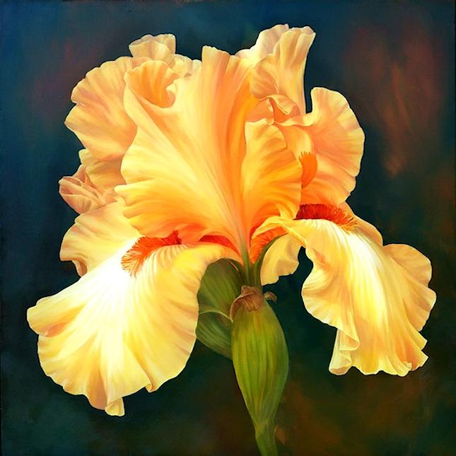 Fleurs printanières  190412115242214217