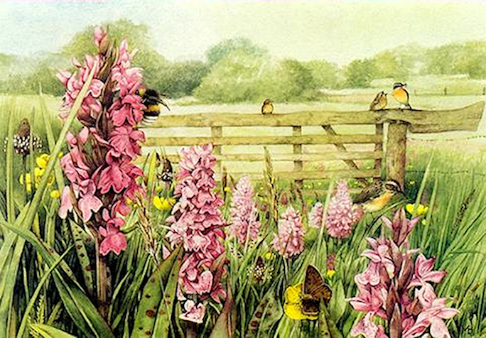 Fleurs printanières  190412115709359595