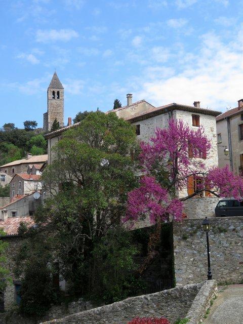 Languedoc6