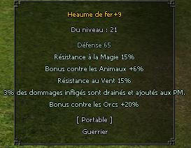 CASQUE 21+9