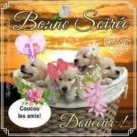 bonne-soiree_098
