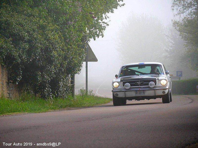 Mustang brume 1