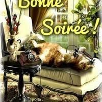 bonne-soiree_041