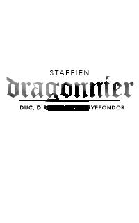 SOLDAT & STAFF ◊ duc