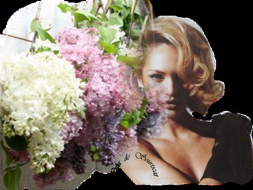 belle lilas rose et mauve