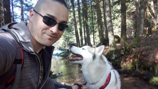 [ADOPTÉ!] Guts, Husky mâle de 8 ans, cherche bonne famille! 190508115502658106