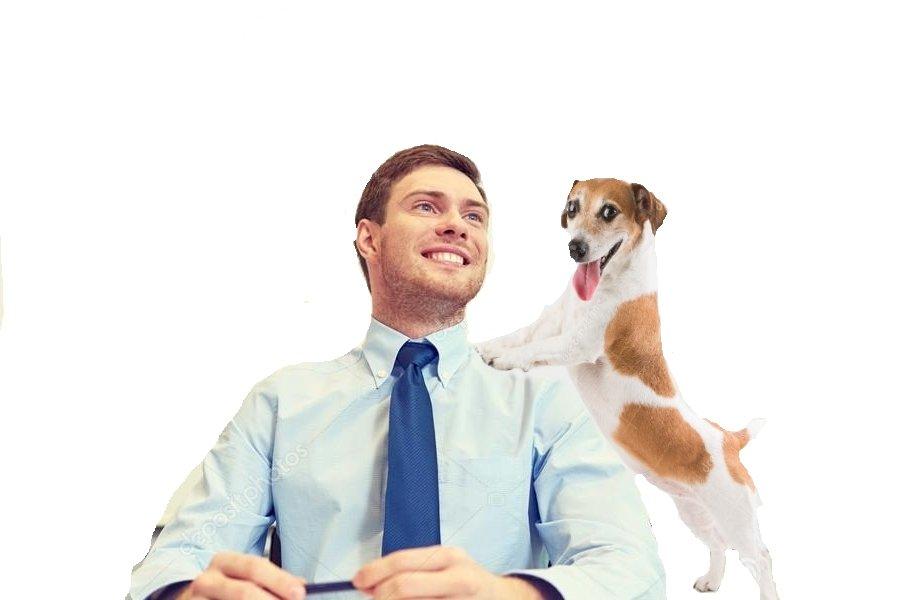 le chien est le meilleur ami de l'homme 190514034942613739
