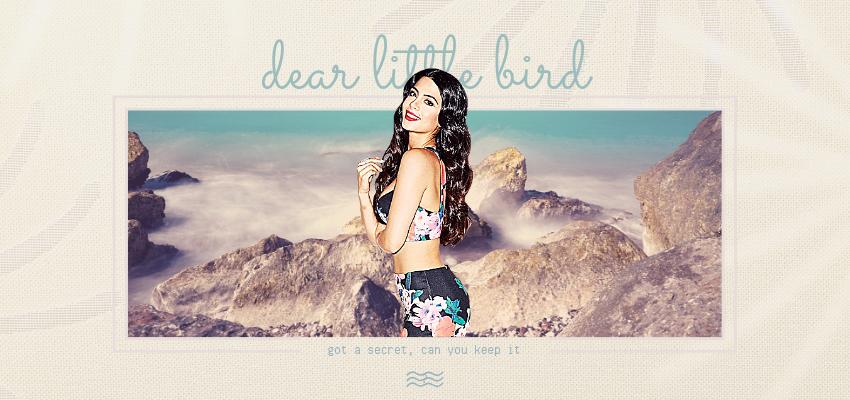Voir un profil - dear little bird 190516034024669995