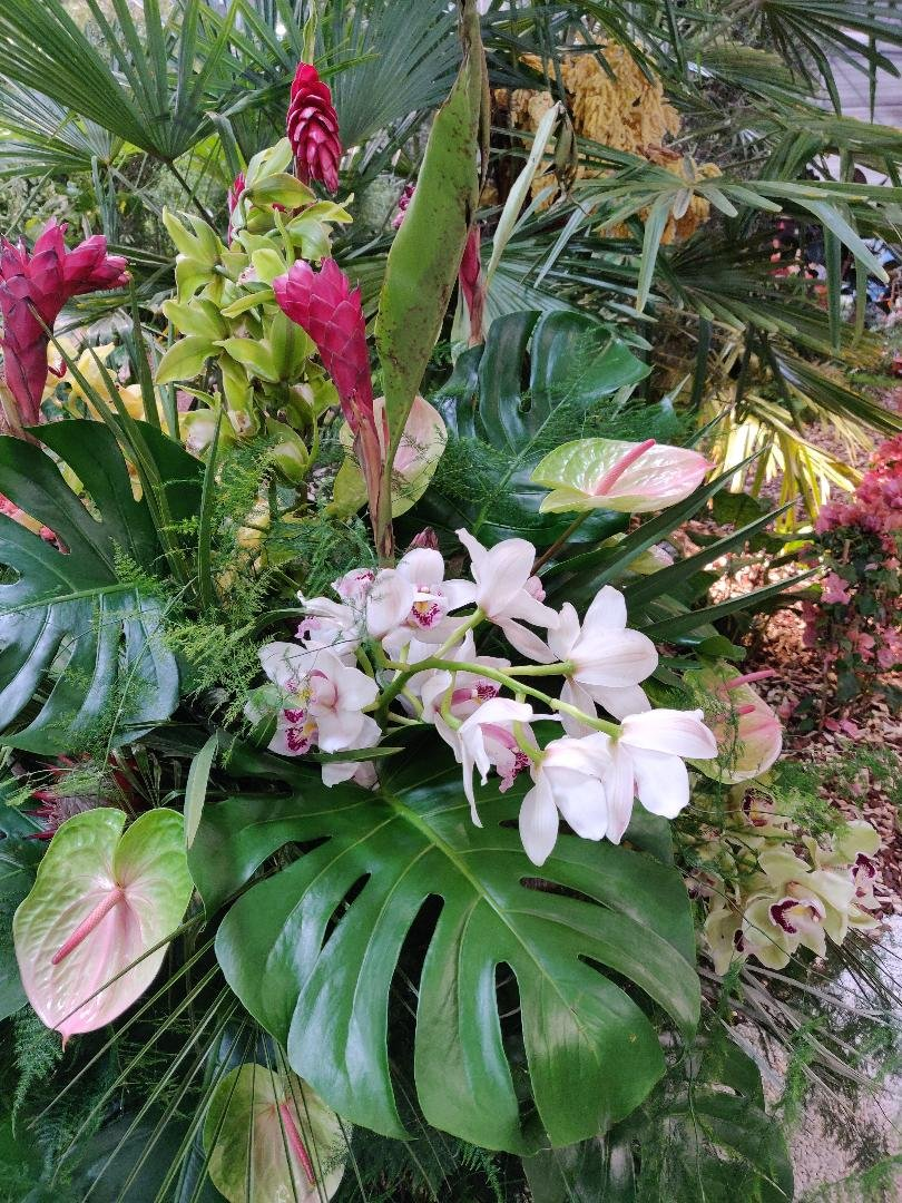 Floralies 2019-9