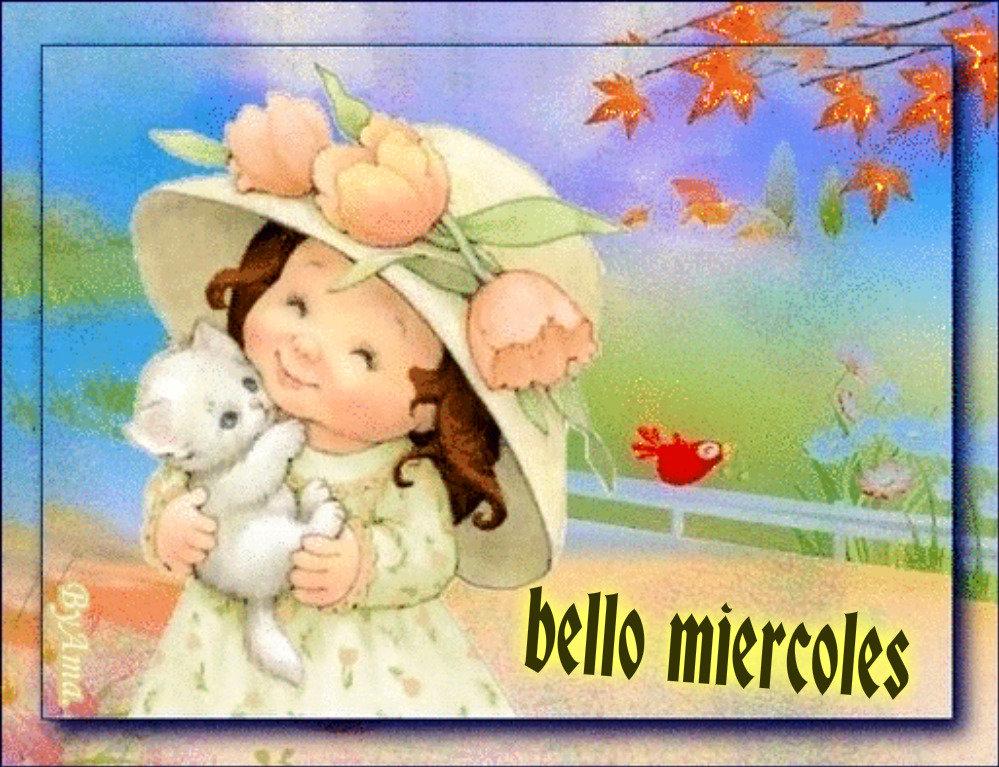Muy Mimosa 19052103533964928