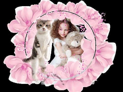 adorable et chat