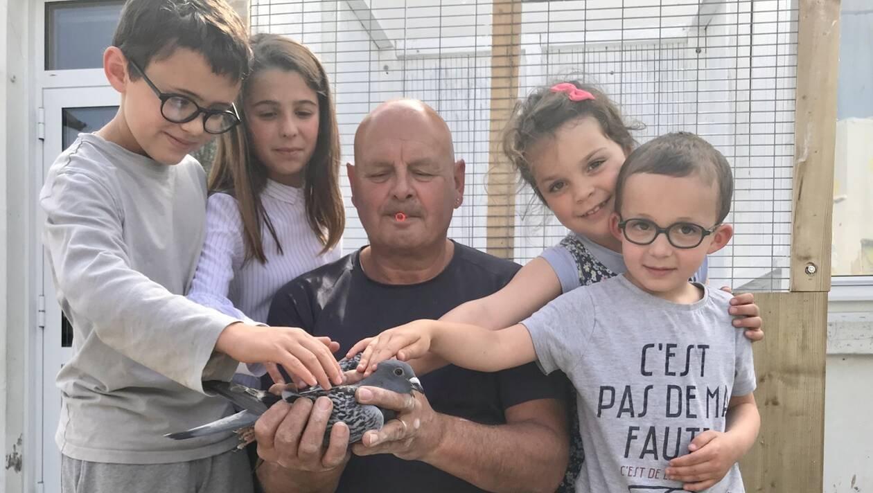 des-pigeons-comme-support-pedagogique-l-ecole-sainte-croix