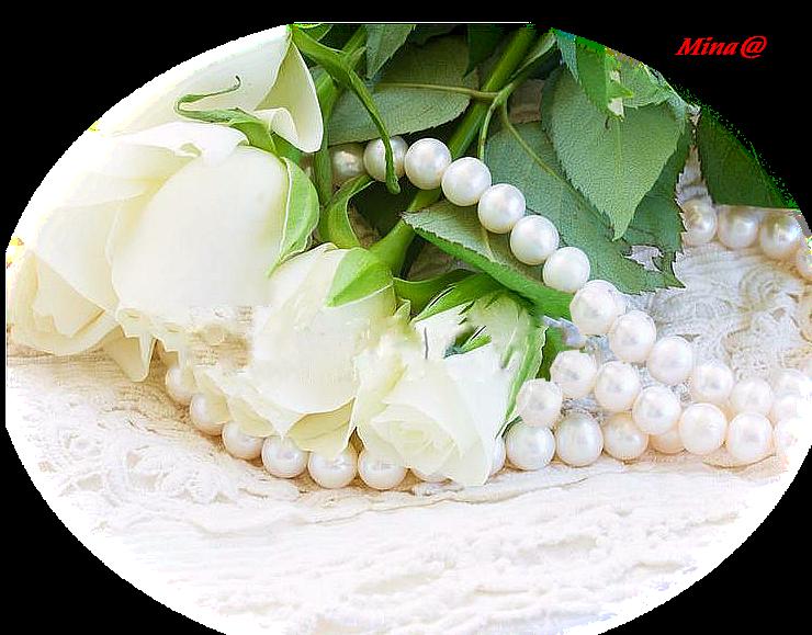 Mina@.5164 mist perle e rose 03.18