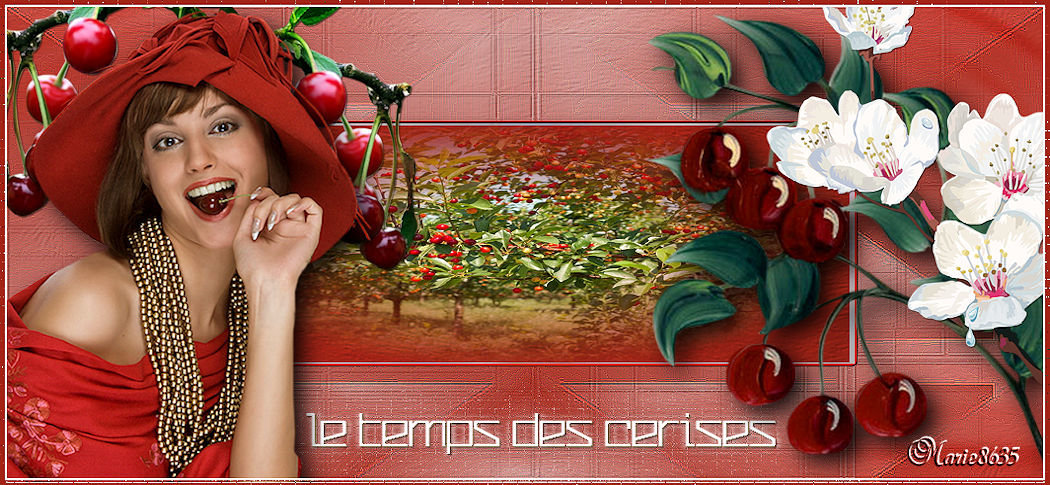 Forumactif.com : LA ROSERAIE DE TRICOTINE 190603011354247857
