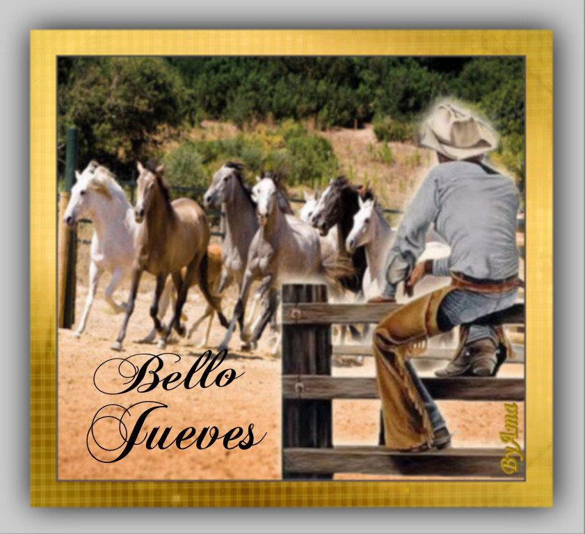 Gaucho Argentino con Guardamonte y Tropilla de Caballos Criollos  190613014514869061